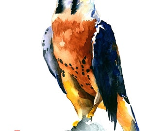 Kestrel Watercolor Fine Art Giclee Print/ Animal painting/ Wildlife watercolor/ Bird lover gift