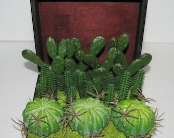 Gift for Him, Faux Succulent Planter, Desk Accessory, Faux Succulent Arrangement, Succulent Gift Box