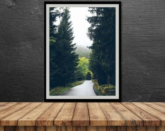 photography, nature, poster, print, woods, forest, fog, mountain, path, home decor, wall decor, interior design, art print, switzerland