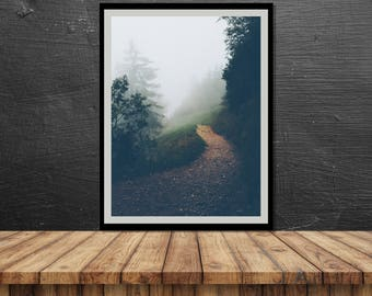 Into the Woods // Poster, Photography, Nature, Forest, Fog, Mountain, Path, Image, Picture, Landscape, Wall Decor, Home Decor, Mood, Unique