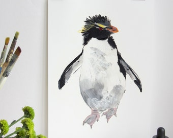 Rockhopper Penguin Print