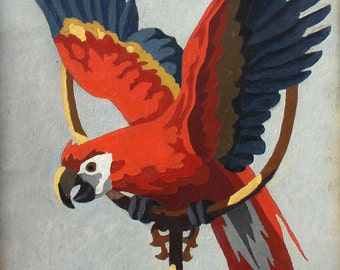Paint by Number Painting Red Parrot : Bird Painting Framed