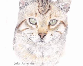 Original Art-  stray cat pawtrait