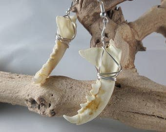 Real Skunk Jaw Wire-Wrapped Earrings / Authentic Taxidermy Jewelry