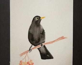 Bird - Blackbird - watercolor - image