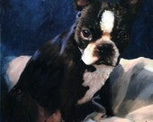 Boston Terrier Dog Portrait I Custom Dog Portraits I Boston Terrier Painting from Your Photo I Dog Portraits by NC
