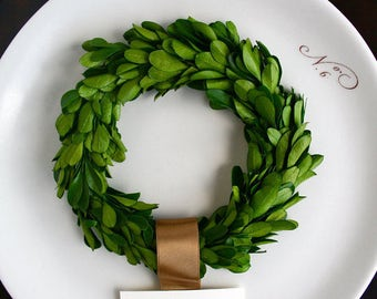 "Preserved Boxwood Wreath, 6"", Small Boxwood Wreath, Wedding Wreath"