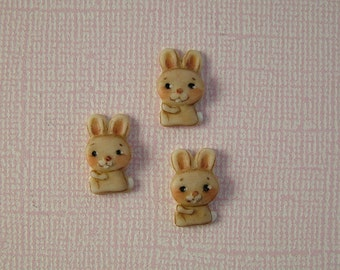 Funny Bunny Button set of 3