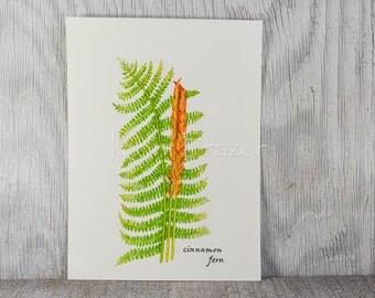 Fern watercolor painting, fern art, cinnamon fern original watercolor painting, 9x12