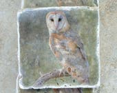 Owl Stone Photo Coasters - Barn Owl Coasters - Stone Coasters Owl Photos - Unique Owl Gifts - Housewarming Gifts - Ready to Ship