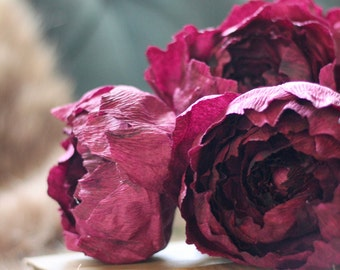 Paper Peony Bundle - Dark Burgundy Crepe Paper Flowers with Book Paper Accent