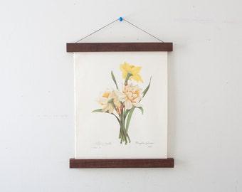 Vintage Flower Illustration and Magnetic Poster Holder Walnut Print Hanger Wooden Poster Hanging  Floral Artwork Narcisses doubles Daffodil