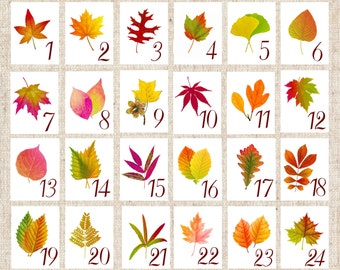 Autumn Leaf Table Cards, Autumn Leaf Table Tent, Autumn Wedding Table Numbers, Thanksgiving Table , Autumn Fall Event, Harvest Table A109