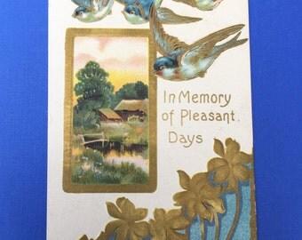 Beautiful Edwardian Era Postcard with Embossed Flying Swallows