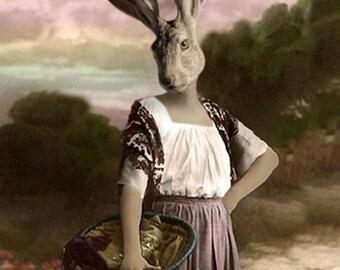Jane Eare, Vintage Jack Rabbit, Anthropomorphic Rabbit, Whimsical Rabbit Art, Hare Art Print, Steam Punk, Unique Wall Decor, Photo Collage