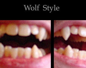 Classic Wolf Fangs (Custom made from scratch)