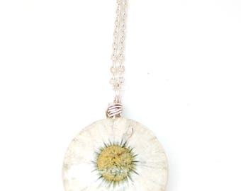 Real Daisy Necklace - Pressed Flower Jewelry - Resin Necklace -  Wire Wrapped Pendant - Daisy in Resin - White Daisy Necklace - Gift for her