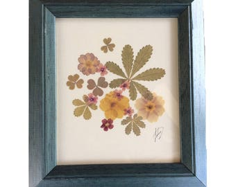 Two pressed flowers framed mixed media