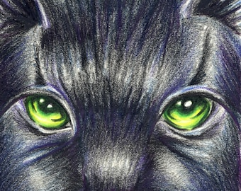 Warriors Cats Hollyleaf / Hollypaw Print / Art / Poster