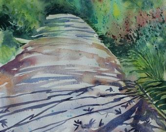 Original watercolour garden painting, Cornwall gardens, tree shadows, tree painting, watercolour of trees, Cornish garden, Summer lane