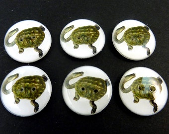 "6 Long Necked Turtle Sewing Buttons.  Handmade Buttons. 3/4"" or 20 mm round. Handmade by Me.  Washer and Dryer Safe."