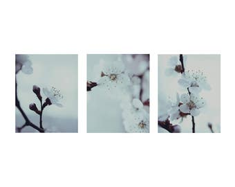Set of 3 Vertical Prints Mint Blue Pictures Spring Photos Cherry Blossom Fine Art Photography White and Mint Bedroom Spring Floral Decor Art