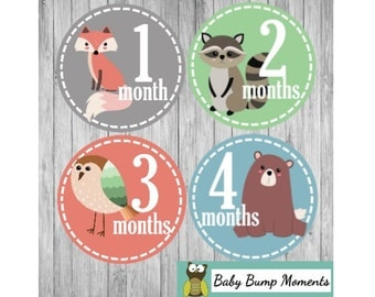 Baby Month Signs, Milestone Stickers, Woodland Animals, Baby Monthly Sticker Unisex, Baby Age Stickers, Months 1-12