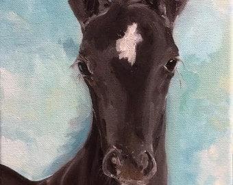 Black Beauty - Original Oil Painting