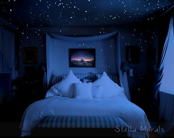 Dark Bedroom At Night glow in the dark star ceilings murals and canopiesstellamurals