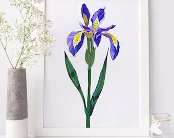 Iris Female Bedroom Art Print, Bedroom Decor