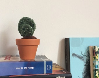 Crochet Cactus, easy-care and decorative