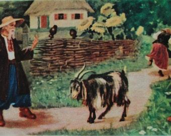 "Illustrators Bazyilev, Bahmutov. Vintage Soviet Postcard ""Goat-Dereza"" folk tale - 1956. Printed in the Ukrainian SSR, Kiev. Sunflowers"
