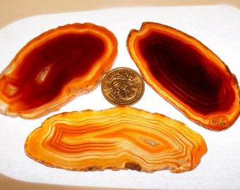 "3 pc Random Lot Red #1 Brazil Geode Agate Slices Wholesale 2.5""-3"" L"
