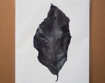 Black and White Leaf Print, Leaf Art Print Black and White, Leaf Detail Photo