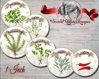 Herb Plant Digital Images  1 inch circles  digital collage sheet - bottle cap images, buttons, tags, scrapbooking, cupcake toppers
