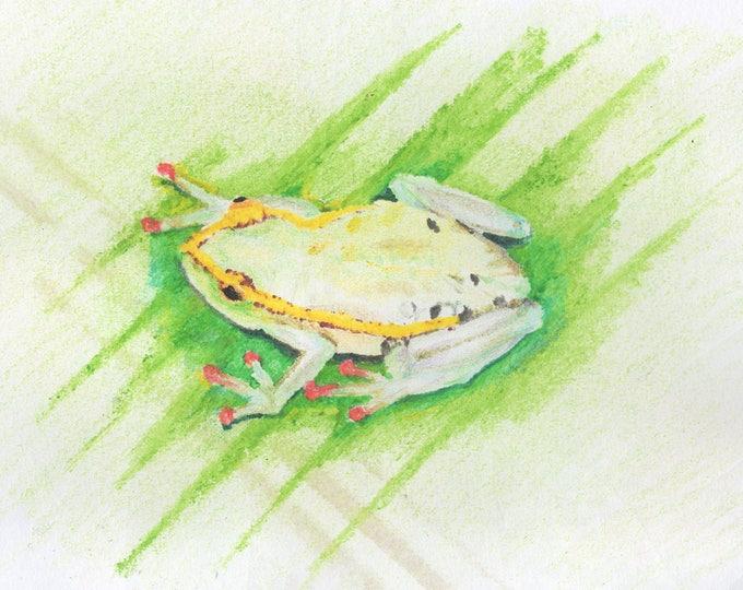Fantastic, friendly frog