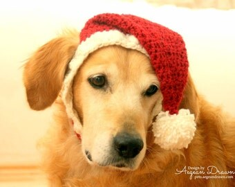 Santa Hat for Dogs, Dog Santa Hat, Holiday Dog Hat, Christmas Hat for Dogs, Large Breed Dog Hat, Christmas Dog Hat, Santa Dog Hat