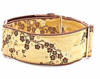Martingale collar, greyhound collar, 2 inch, dog collar,  martingale collar,collars, martingale collars