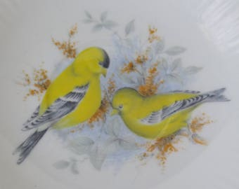 Royal Minster Fine Bone China Saucer, Center Birds Design White With Gold Trim