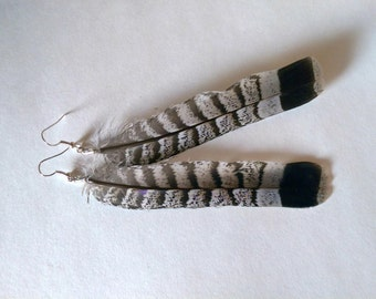 Grouse feather earrings, Real feather earrings, Natural feather earrings, Tribal feather earrings,