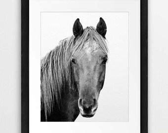 Horse Print, Horse Photo, Black & White Photography, Horse Art, Icelandic Horse, Wilderness Print, Minimalist, Modern Wall Art Printable Art