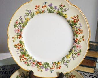 Almost antique (c.1920s) Johnson Brothers Pareek Sweet Briar hand-painted dinner plate. Embossed florals. RARE!
