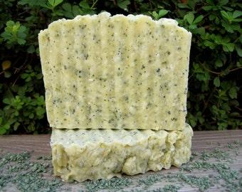 Kelp and Sea Salt Soap Scrub, Seaweed Soap, Exfoliating Soap, Spearmint Soap, Detox Soap, fresh Soap, Anti Cellulite, Hot Process Soap