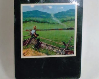 Trump/Playing Cards/Young Boy On A Fence Watching A Train Go By/New/USA