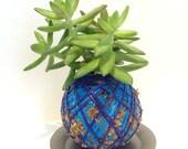 Blue/purple sphere plant kokedama style