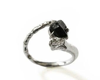Bone Meteorite Ring