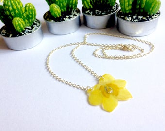 Flower necklace true yellow narcissus resin, spring, brass chain (various sizes).