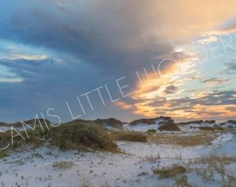 Florida White Sand Dunes Stock Image