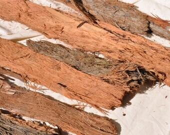 Stringybark Gumtree Bark, Eucalyptus Bark, Rustic Bark, Australian Bark, Stringybark, Rustic Wedding Decor, Woodland Decor, Terrarium Decor