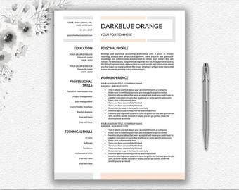 professional resume template one page resume and two page resume curriculum vitae template for - Two Page Resume Sample